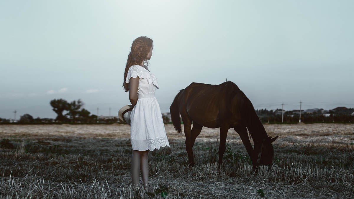 sommerkleid-pferd-kleid
