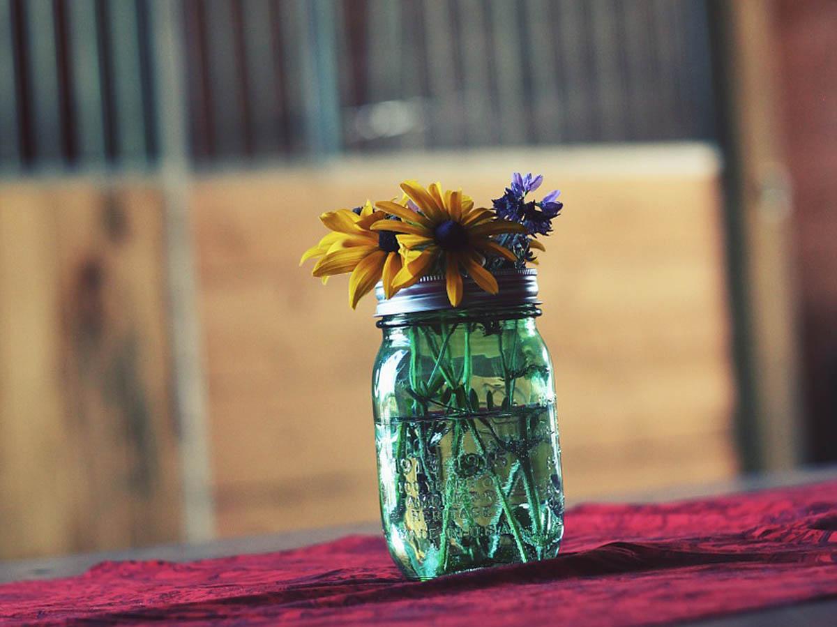 Blumen Blumendeko Blumentrend